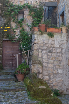 Civita di Bagnoregio - potted plants