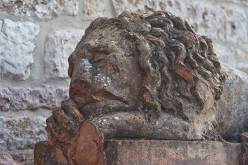 A lion in front of Santa Chiara